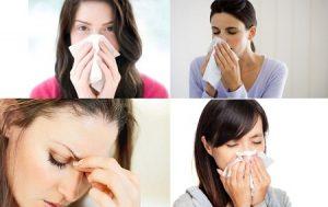 Tảo Nhật Bản giúp cải thiện triệu chứng viêm mũi dị ứng