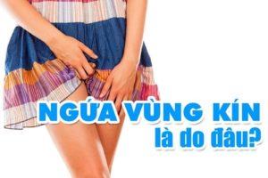 Nguyên nhân gây ngứa vùng kín - ngứa âm đạo