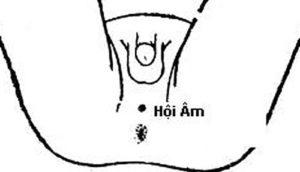 Chống xuất tinh sớm bằng cách bấm bấm huyệt hội âm