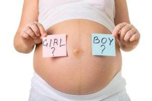 Có thể đoán giới tính thai nhi qua nhịp tim thai không?